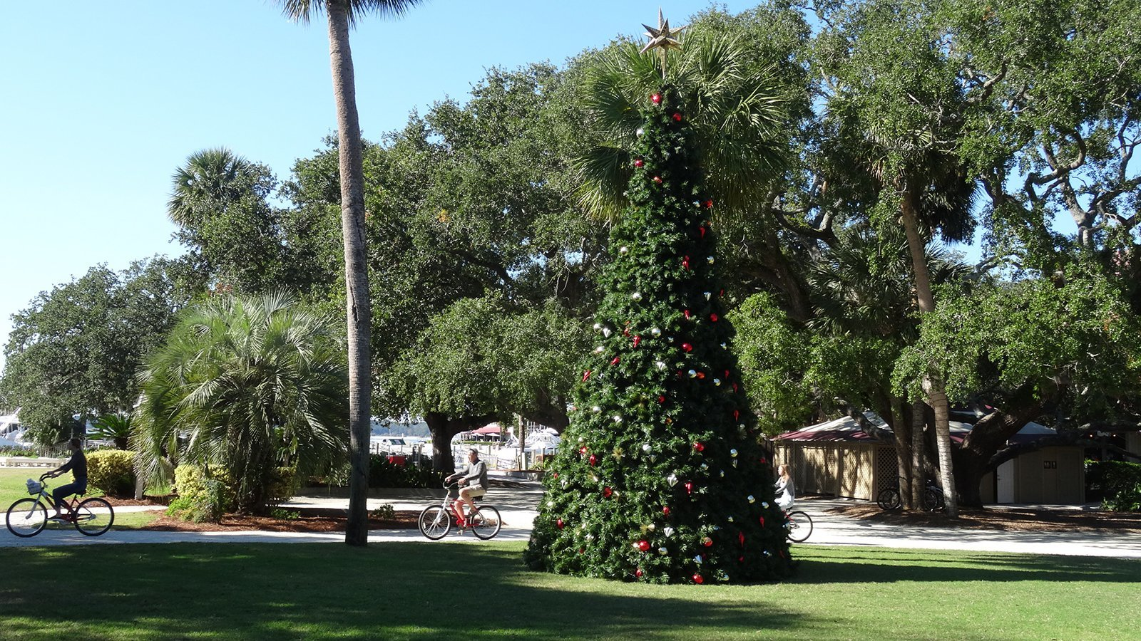 Harbour Town Christmas Tree 2018
